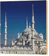 Blue Mosque In Istanbul Wood Print