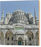 Blue Mosque In Istanbul Turkey Wood Print