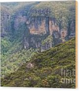 Blue Mountains Viewpoint Wood Print