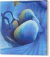 Blue Oasis Wood Print