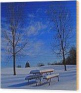 Blue On A Snowy Day Wood Print