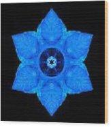Blue Pansy II Flower Mandala Wood Print by David J Bookbinder