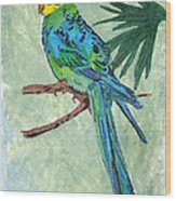 Blue Parakeet Wood Print
