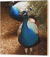 Blue Peacocks Wood Print
