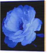 Blue Perfection Wood Print