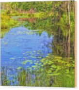 Blue Pond And Water Lilies Wood Print