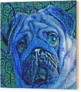 Blue Pug Wood Print