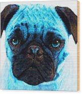 Blue - Pug Pop Art By Sharon Cummings Wood Print
