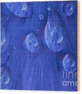 Blue Rain Wood Print