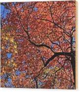 Blue Ridge Mountains Fall Foliage Wood Print