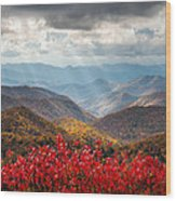 Blue Ridge Parkway Fall Foliage - The Light Wood Print by Dave Allen