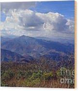 Blue Ridge Parkway I Wood Print
