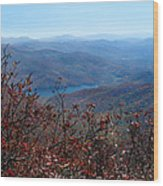 Blue Ridge Parkway IIi Wood Print