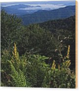 Blue Ridge Vista Wood Print