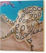 Blue Ringed Octopus I Wood Print