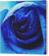 Blue Rose  Wood Print