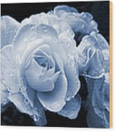 Blue Roses With Raindrops Wood Print
