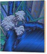 Blue Satin And Mushroom Wood Print
