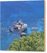 Blue Sea Wood Print by Boon Mee