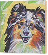 Blue Sheltie Wood Print