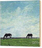 Blue Skies And Blue Grass Wood Print