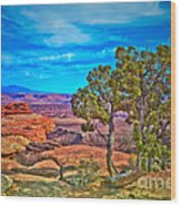 Blue Skies And Canyons Wood Print
