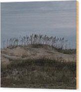 Blue Skies At The Dunes Wood Print