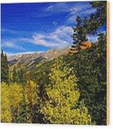 Blue Skies In Colorado Wood Print