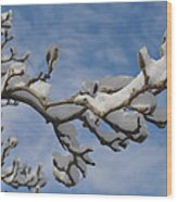 Blue Skies In Winter Wood Print by Bill Cannon