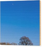 Blue Sky Day Wood Print
