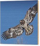 Blue Sky Flight Wood Print