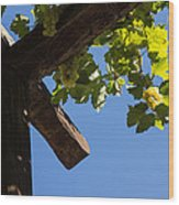 Blue Sky Grape Harvest - Thinking Of Fine Wine Wood Print