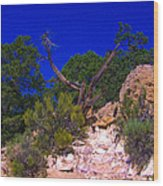 Blue Sky Over The Canyon Wood Print