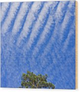 Blue Sky White Clouds Green Trees Wood Print