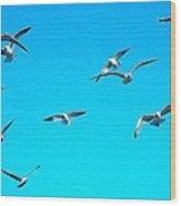 Blue Sky With Gulls Wood Print