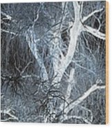 Blue Snow Wood Print