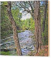 Blue Spring Branch 2 Wood Print