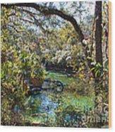 Blue Springs 1 Wood Print