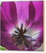 Blue Star Tulip Design 2 Wood Print