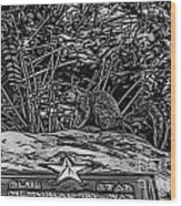 Blue Star Visitor Wood Print