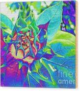 Blue Sunflower Wood Print