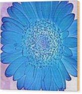 Blue Surprise Wood Print