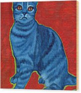 Blue Tabby Wood Print