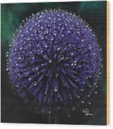 Blue Thistle Wood Print by Lynette Yencho