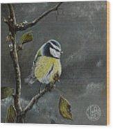 Blue Tit Near Winter Wood Print