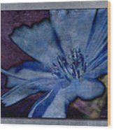 Blue Too Wood Print