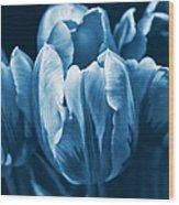 Blue Tulip Flowers Wood Print