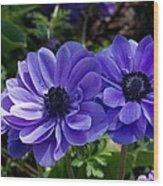 Blue Twins Wood Print