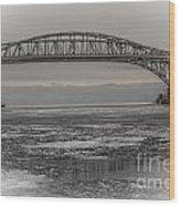 Blue Water Bridges Wood Print