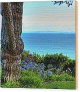 Blue Waters In Palos Verdes California Wood Print